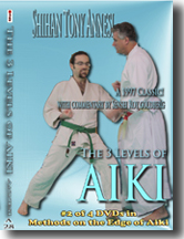 3 Levels of Aiki