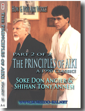 Principles of Aiki 2