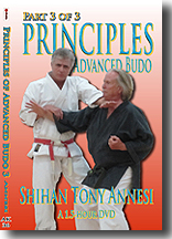 Principles of Advanced Budo 3